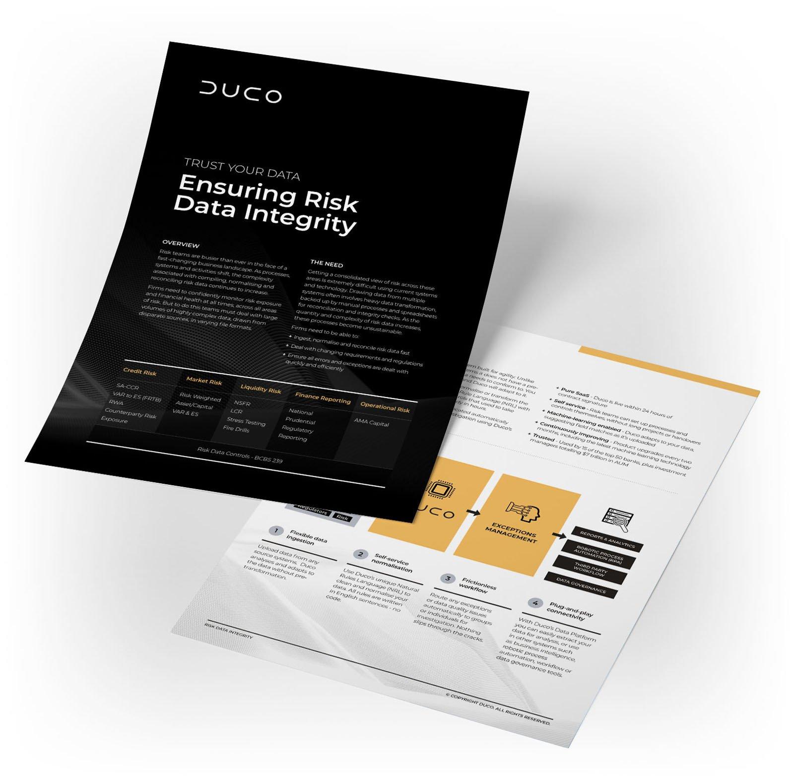 Duco_Risk_Data_Integrity_Mockup_01